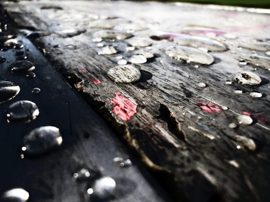 Wet Ground 2012