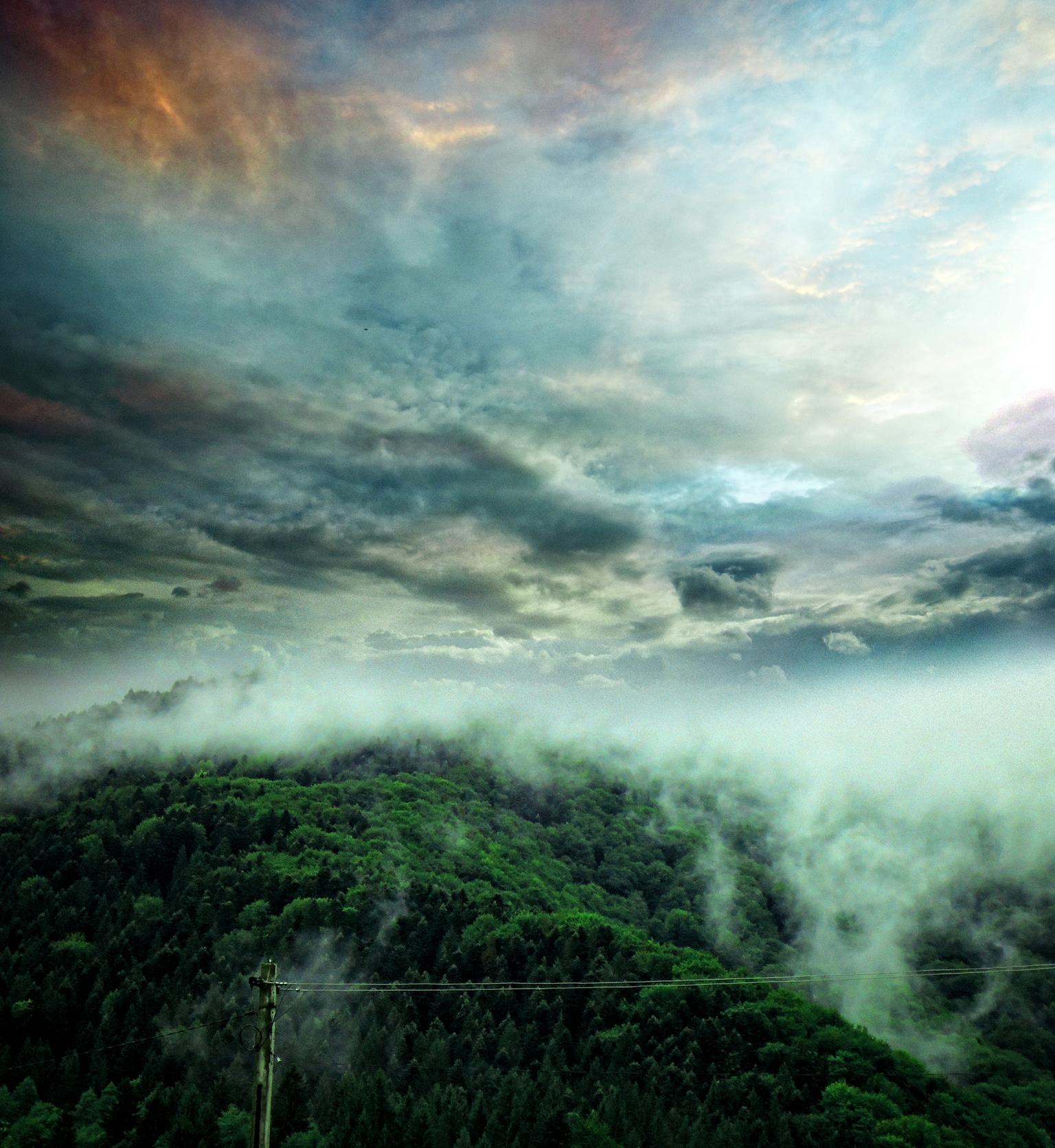 Carpathian Fog 2013