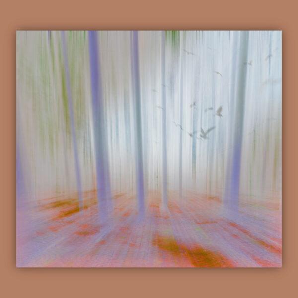 Forest Light Gray 2019